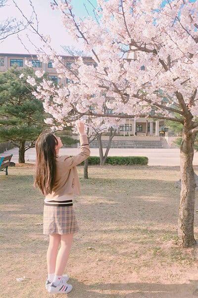 Trường trung học nghệ thuật Goyang - Ảnh 3 - Top 5 đồng phục học sinh Hàn Quốc sang chảnh giá đắt đỏ