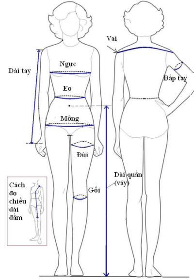 Với công thức cắt áo sơ mi nữ này, đầu tiên bạn cần thực hiện cách đo