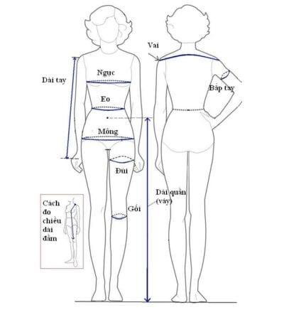 Cách lấy số đo chuẩn cho nàng tha hồ diện đồ thiết kế